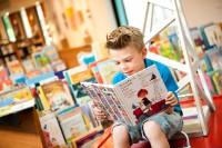 Bekijk details van De Bibliotheek op school steeds professioneler